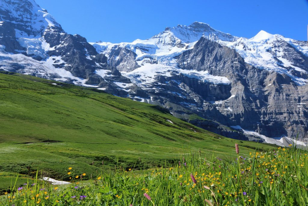 Jungfrau, Silberhorn с Kleine Sheidegg