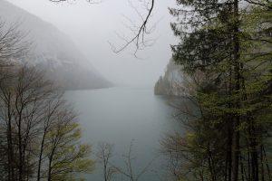 Königssee в тумане