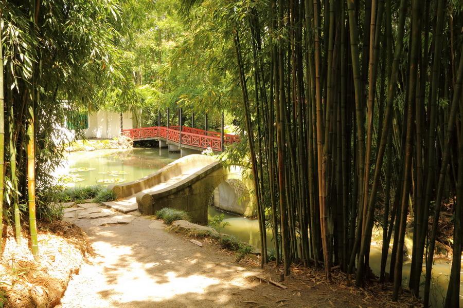 Hamilton Gardens China