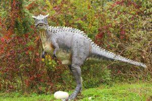 Dinopark, Bled