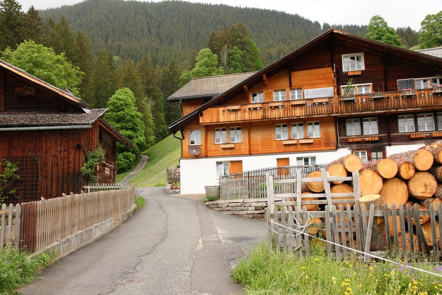 Bergsheuer, Grindelwald