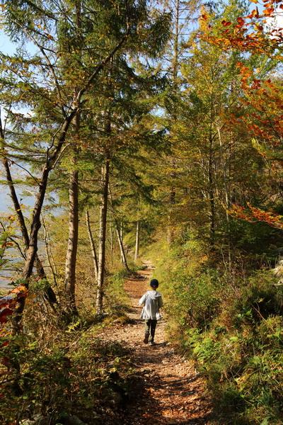 озеро Бохинь, тропа