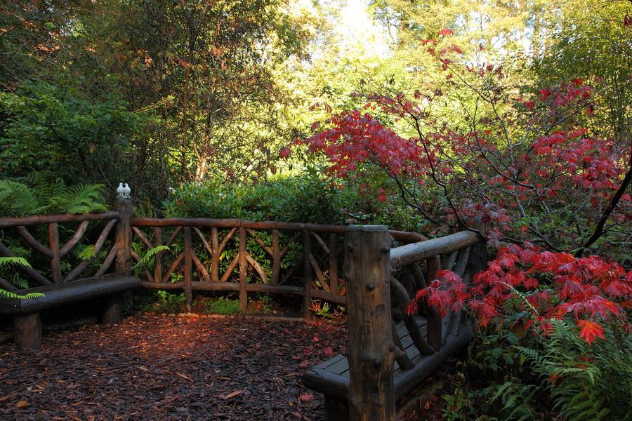 GlenGrant garden