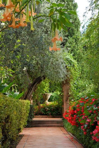ницца, сады виллы эфрусси