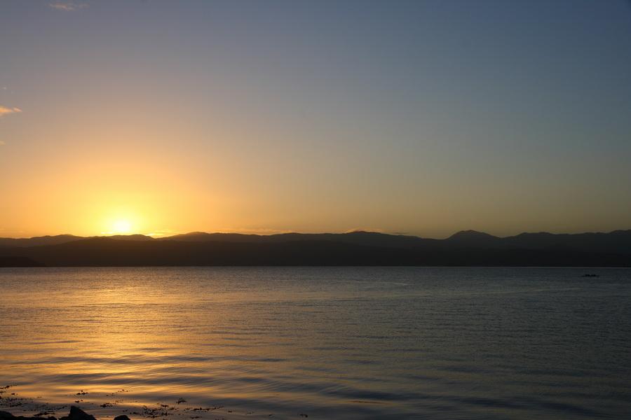 wellington sunrise