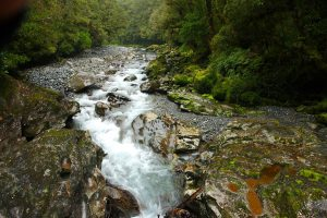 milford road - the chasm
